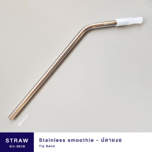 Stainless smoothie